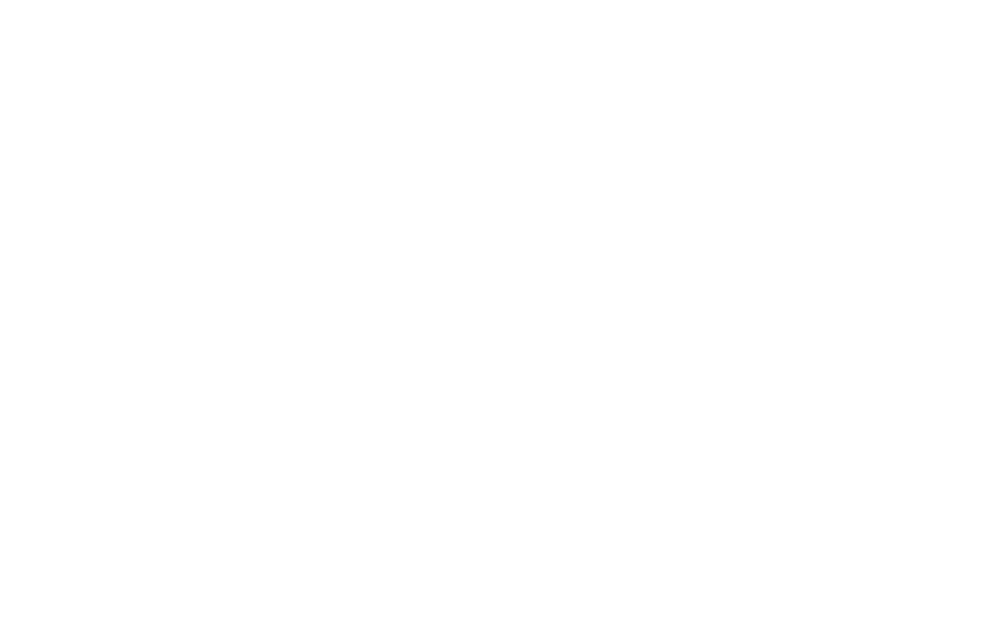 Revolution Safes